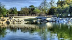 3 Reasons to Visit the William R. Mason Regional Park